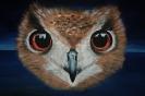 Schilderij uil